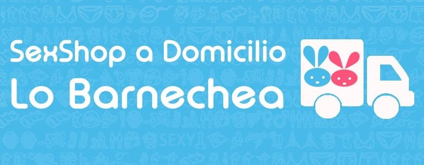 Sexshop en Lo Barnechea ♥ Sexshop a Domicilio en Lo Barnechea