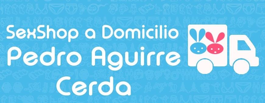 Sexshop en Pedro Aguirre Cerda ♥ Sexshop a Domicilio en P A Cerda