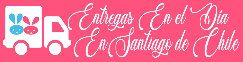 entregas en santiago